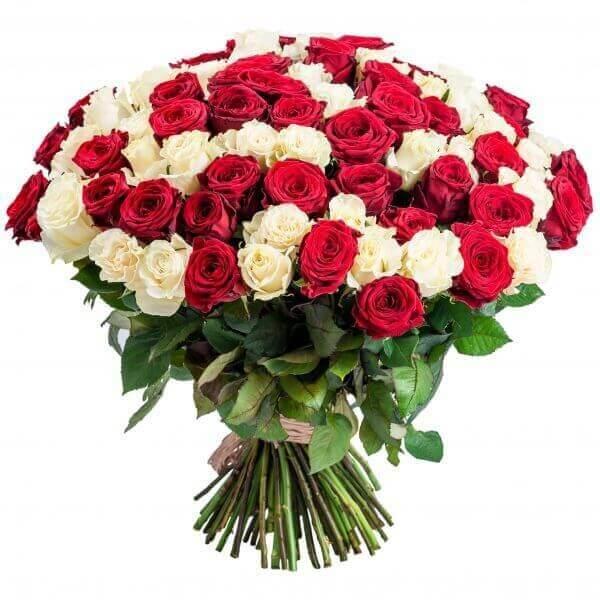 101 raudonos ir baltos rožės gėlių puokštė