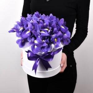 Gėlėms vyrams mėlynų irisų dėžutė