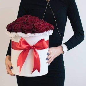 Karališkos rožės gėlės dėžutėse