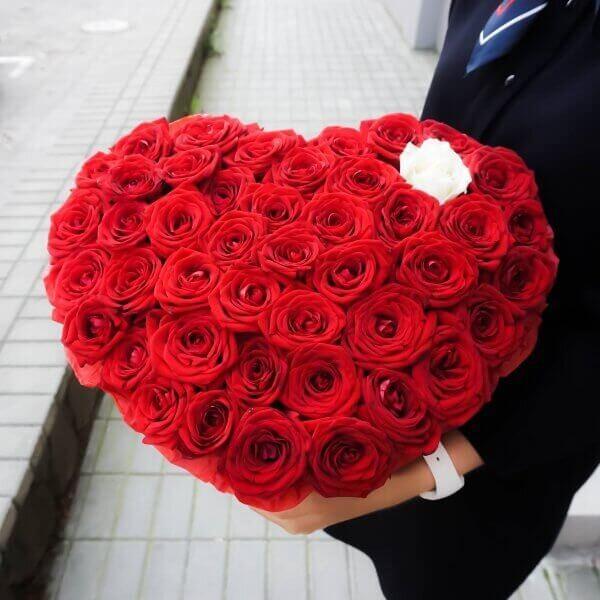 Raudonos rožės širdelės formos gėlių dėžutėje