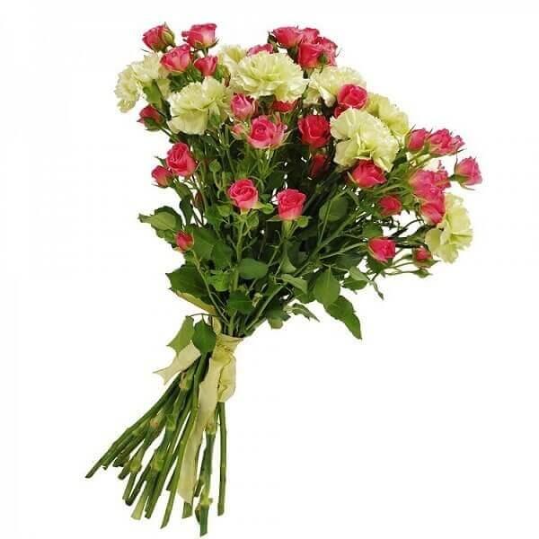 Gvazdikai ir rožytės