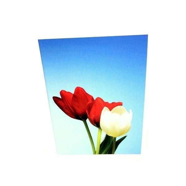 """Atvirukas """"Tulpės"""""""
