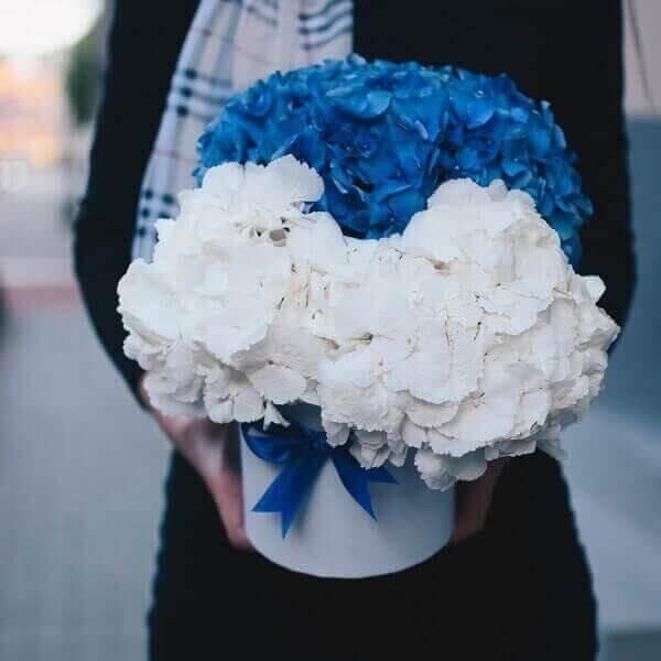 Dviejų spalvų hortenzijų gėlių dėžutė