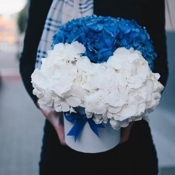 Dviejų spalvų hortenzijos gėlės dėžutėse