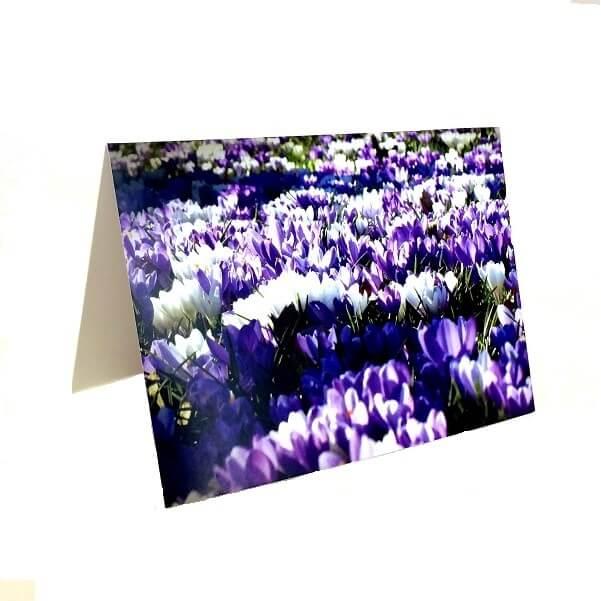 """Atvirukas """"Violetinių gėlių laukas"""""""