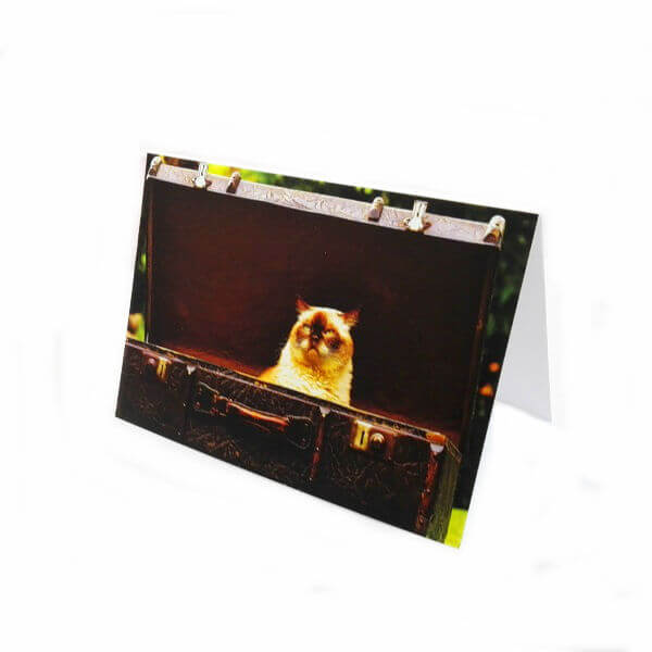 """Greeting card """"Cat in the suitcase"""""""