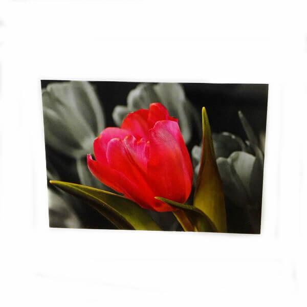 Открытка «Яркий цветок»