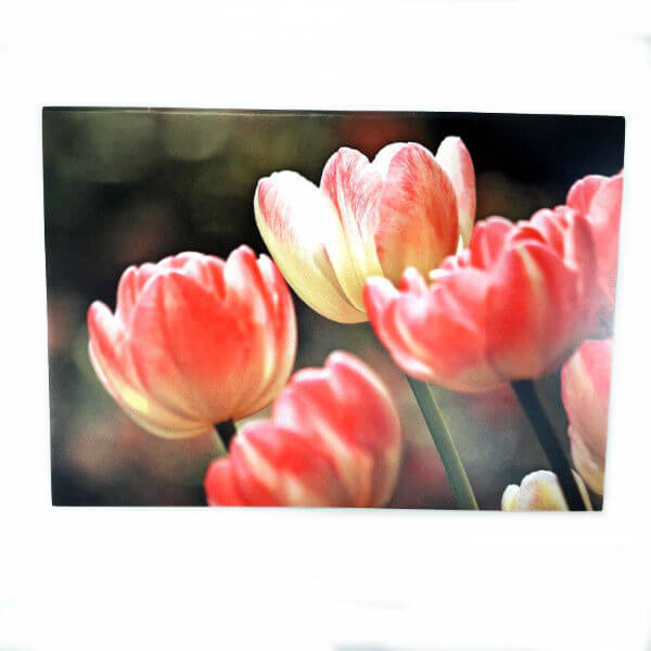 """""""Blooming tulips"""" greeting card"""