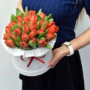 Raudonos tulpės dėžutėje
