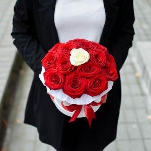 Gėlių dėžutė Viena balta rožė