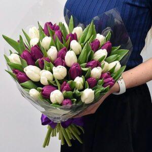 Baltos ir violetinės tulpės gėlės puokštėse