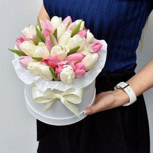 Rožinės ir baltos tulpės dėžutėje