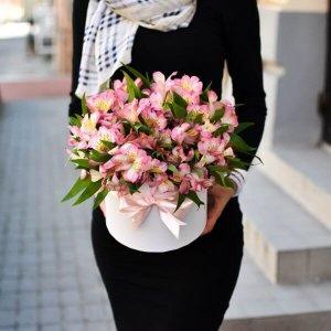 Vienspalvės alstromerijos gėlės dėžutėse
