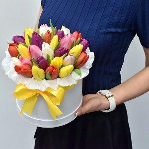 Įvairių spalvų tulpių dėžutė