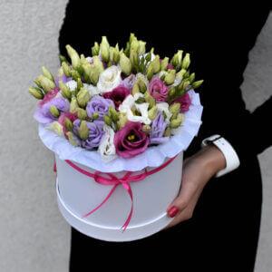 Gėlių dėžutės įvairiaspalvės eustomos