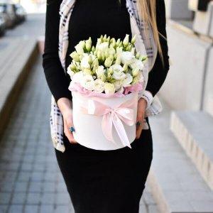 Vienspalvės eustomos gėlių dėžutės