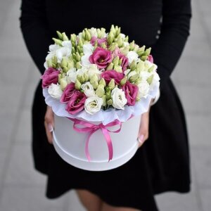 Dviejų spalvų eustomos gėlių dėžutėse