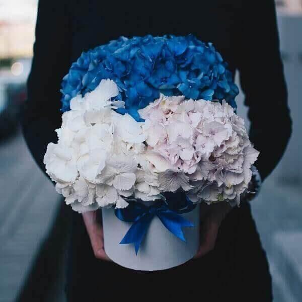 Įvairiaspalvės hortenzijos gėlių dėžutėse