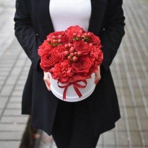 Raudonos gėlės gėlės dėžutėse