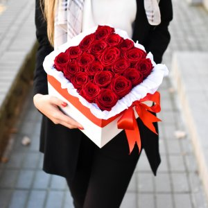 Raudonos rožės gėlės kvadratinėse dėžutėse