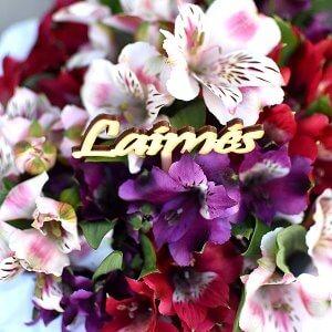 """""""Laimės"""" lazdelė į gėlių dėžutės"""