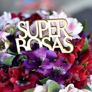 """""""Super Bosas"""" lazdelė į gėlių dėžutės"""