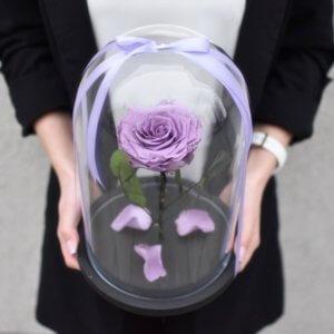 Крупная Оливковая стабилизированная роза под стеклом