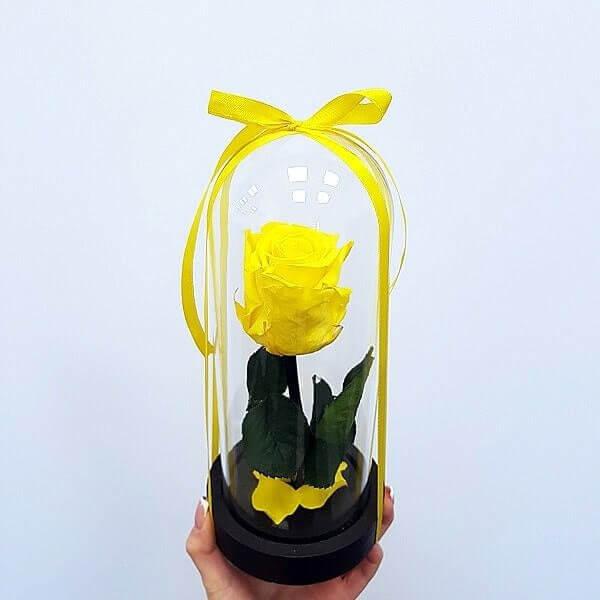 Geltona stabilizuota mieganti rožė po stiklu