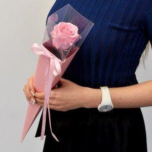 Rožinė stabilizuota mieganti rožė tūboje