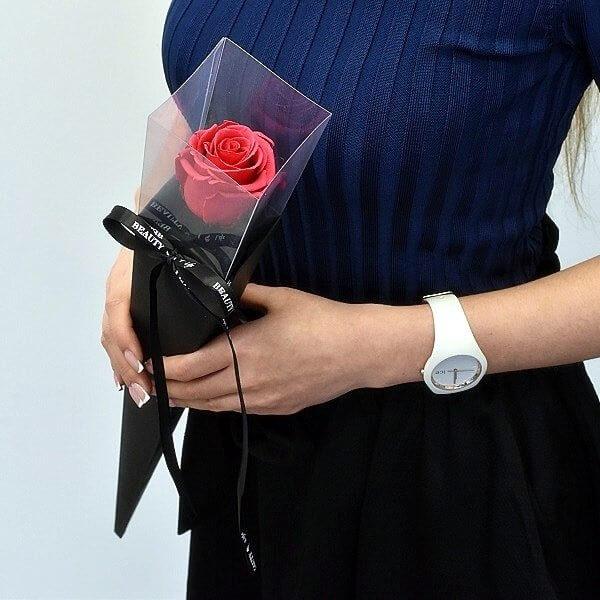 Ryškiai rožinė stabilizuota rožė tūboje