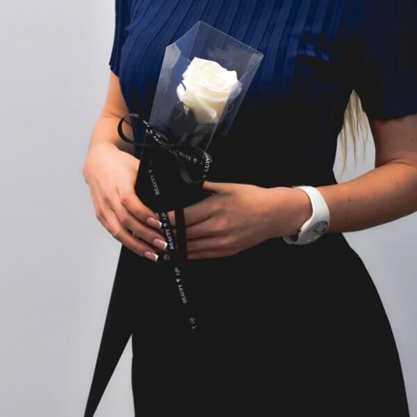 Kreminės spalvos stabilizuota rožė tūboje