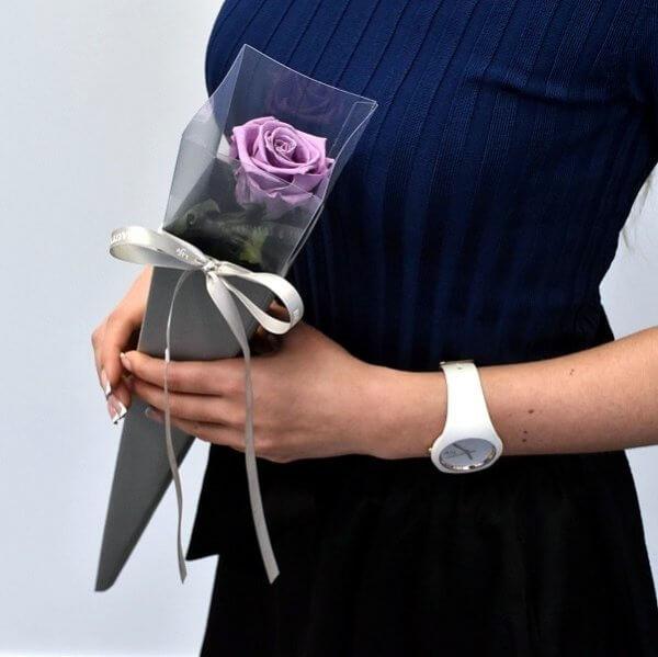Violetinė balzamuota rožė tūboje