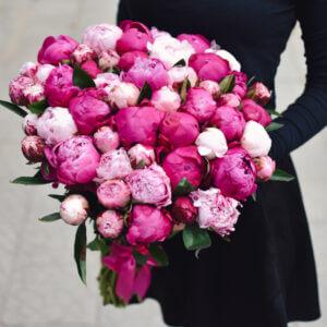 Dviejų spalvų bijūnai gėlės puokštėje