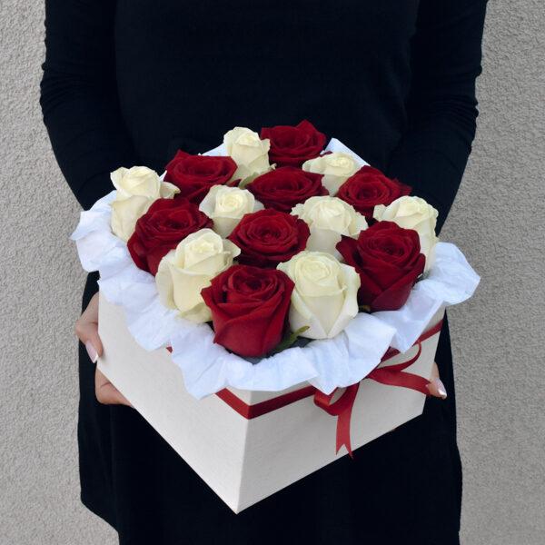 Raudonos ir baltos rozės kvadratinėje dėžutėje