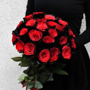 Gėlės moterims raudonų rožių juodais krašteliais puokštė