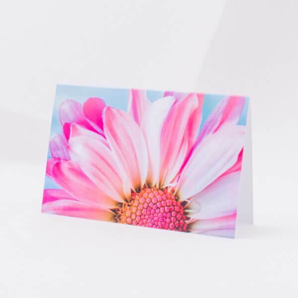 Atvirukas įvairiomis progomis su rožiniu gėlės žiedu